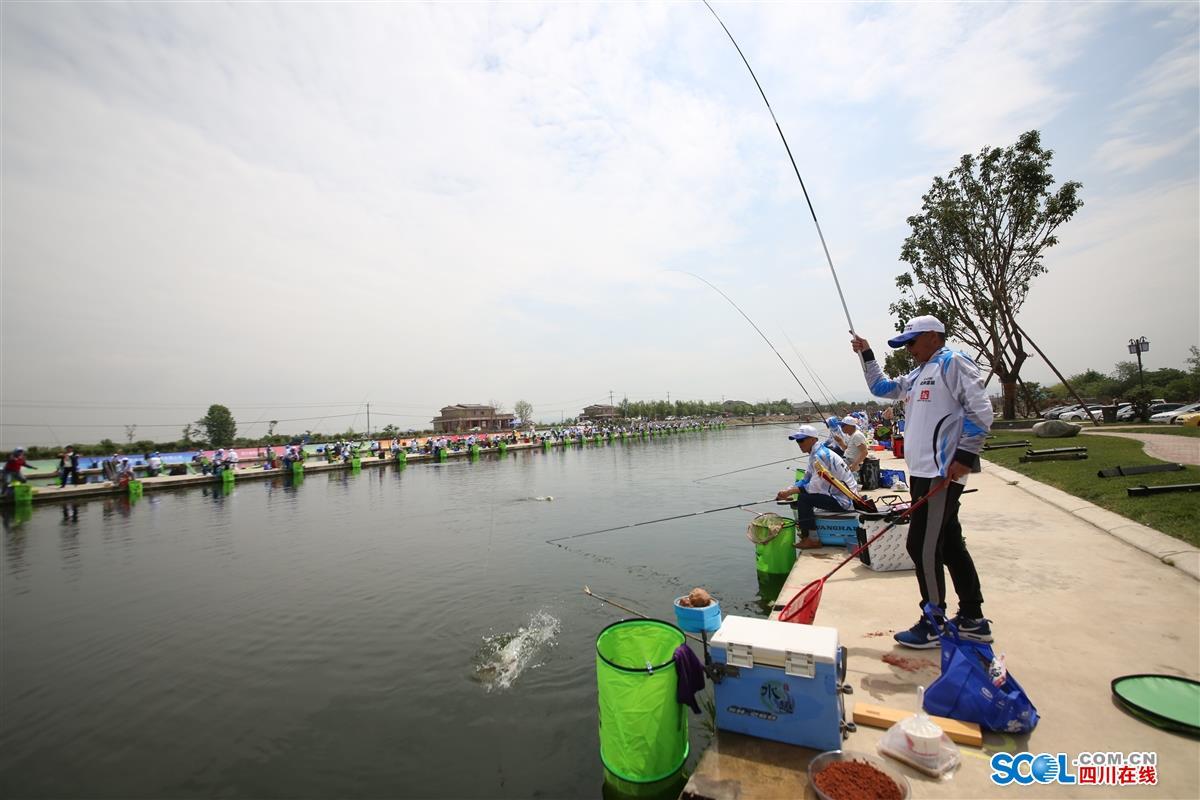"""众多钓鱼高手汇集""""西部钓都""""广汉三水  一竿较高下"""